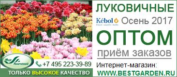 Мир Увлечений. Посылторг. Интернет-магазин. Семена, розы, луковицы, саженцы от мировых лидеров
