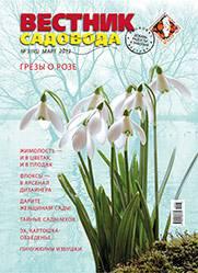 Cover_VS15