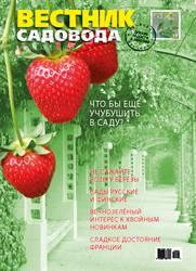 Cover_VS16