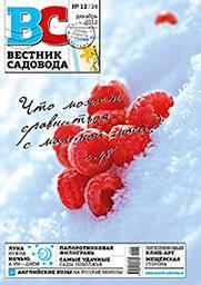 Cover_VS24