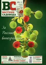 Cover_VS37