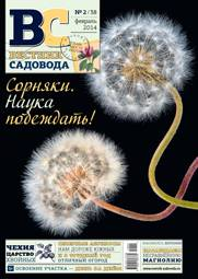 Cover_VS38